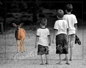 Deer looking at Boys